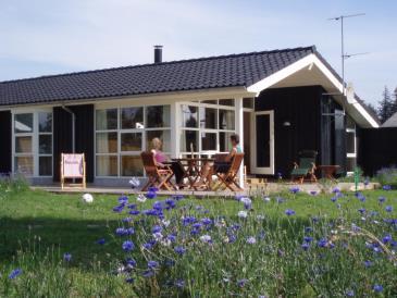 Feriehus 021310 - Danmark