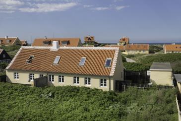 Feriehus 020439 - Danmark