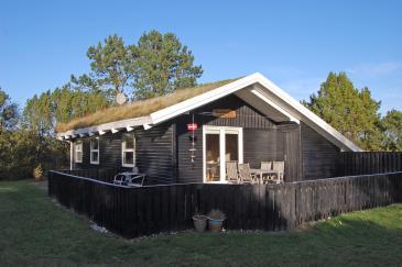 Ferienhaus 098829 - Dänemark
