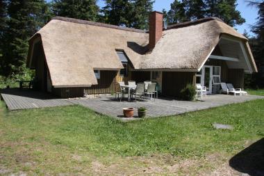 Ferienhaus 115 - Dänemark