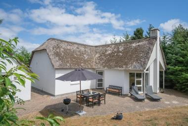 Ferienhaus 3170 - Dänemark