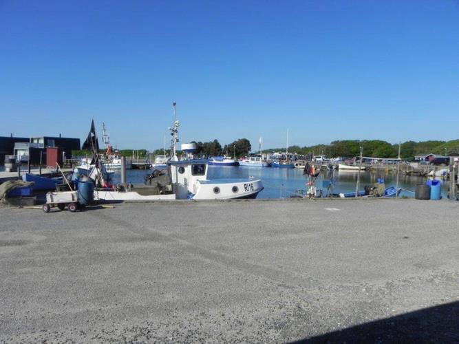 60045, Bork Havn, Hemmet